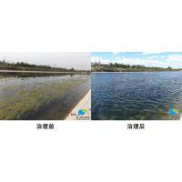 针对水绵、浮萍水污染问题邦源环保有绝招