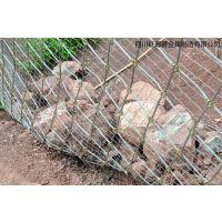 边坡防护网 四川红蜀蓉主动边坡防护网厂家材质钢丝绳