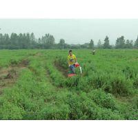 牧草割晒机 山地丘陵用水稻割晒机 多行牧草收割机
