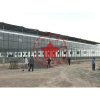 现代化玻璃温室智能化调节气候气温—青州瀚洋温室