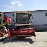 专业改装大型玉米秸秆靑储收割机 自走式苜蓿草靑储机价格