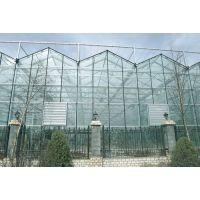 建这样的智能温室大棚,在温室里赚钱!智能温室大棚建造