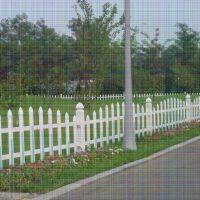河南洛阳吉利小区塑钢护栏网 庭院围栏效果图大全 便宜的pvc护栏