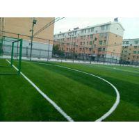 批发体育场围网栏pvc 运动型勾花护栏围网。