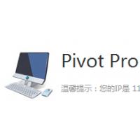 PIVOT PRO购买销售,PIVOT PRO正版软件,PIVOT PRO代理报价格