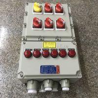 300×500×150mm防爆照明配电箱 5回路16A 总开关32A 挂式安装
