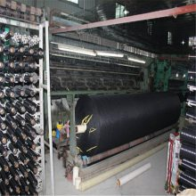 土木工程施工现场覆盖网 防风防尘网 两针盖土网