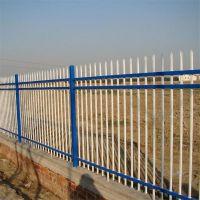 常州家庭专用外墙栅栏 厂区围墙 花园公园围栏 隔离防护网可定制