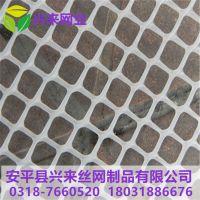 甘肃塑料网 小鸡的塑料网生产 鹅苗养殖网直销