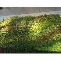 青海仿真植物墙 高尚装饰设计 长期供应塑料植物 室内商业软装工程