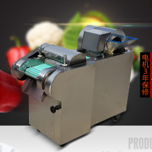 一机多用切菜机型号 佳鑫牌野菜切根茎机器 家用切片机