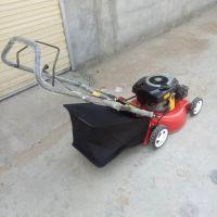 优质好用自走式草坪修剪机 绿化带专用手推式汽油草坪修剪机金佳