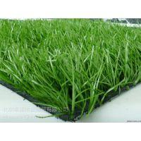 人造草坪哪里有卖的北京假草坪厂家