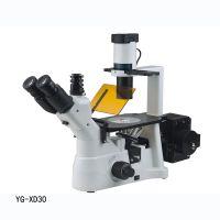 倒置荧光显微镜YG-XD30临床诊断 教学实验 病理检测 细胞荧光染色观察