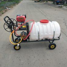 汽油农药喷雾器 手推式打药机 乐丰机械