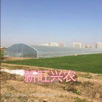 新旺兴农种植大棚8328热镀锌生产