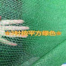 优质盖土网 盖土网生产 工地绿网厂家
