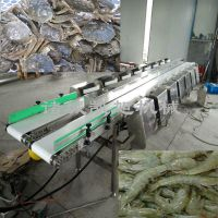凯旭热销大虾自动分拣机 对虾按大小分级机器