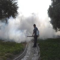 赵县种植蔬菜烟雾机 路边草坪杀菌烟雾机 背负式果树喷洒农用弥雾机