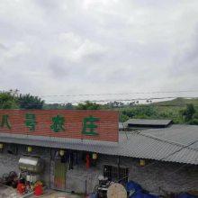 海南东方防腐蚀屋面仿古瓦,pvc塑料屋顶树脂瓦片,塑钢瓦
