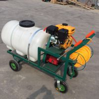 养殖专用高压力喷雾器 手推式喷雾器 园林植保机械质量保证