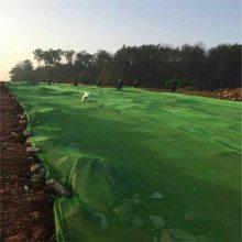 绿色盖土网 工地绿网 扬尘网现货