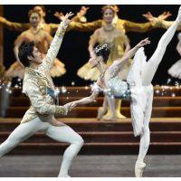 海盐舞蹈表演公司 海盐开业庆典舞蹈 芭蕾舞拉丁舞踢踏舞