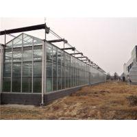 郑州玻璃生态科研餐厅温室G96