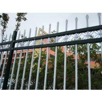 广州埋地安装护栏 连州斜坡塑钢围栏 腾众围栏道路隔离栏栅定制