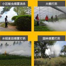 百香果杀虫弥雾机 远程水冷打药机 质保弥雾机