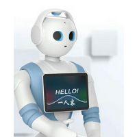 高端智能服务机器人出售出租,高端人形机器人租赁