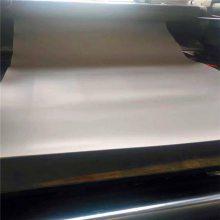 现货昌盛 供应白色PTFE四氟板 塑料王阻燃