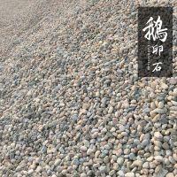 【灵寿县大量现货促销】天然鹅卵石 8cm-12cm 大小均匀 博淼鹅卵石1600kg/m3 景观石