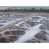 化工园区废水综合处理领导者,龙安泰环保行业龙头企业