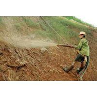 客土喷播绿化挂网 客土喷播报价 客土喷播施工全方位服务