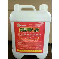 修复土壤、促生根高浓缩微生物菌剂,价格优惠,厂家直销