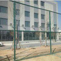 扁铁式球场护栏网 镀锌丝郑州体育场防护网 可定做