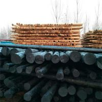 现货供应松木防腐油木杆电线杆油炸杆通信电杆