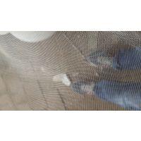 果树防虫网大面积网片 支持定做网罩 果树苗网罩