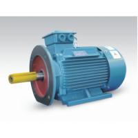 山东开元电机 密州牌 三相异步电动机 IP23 10KV Y5601-12极 315KW028396