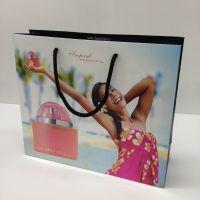 供应高档彩色印刷包装环保纸袋 定制手提纸袋 礼品袋