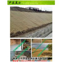 湘潭抗冲刷生物毯 《绿雪公司》 麻椰固土毯价格价格公道