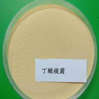 供应益昊生物 饲料用丁酸梭菌
