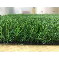 人造草坪仿真草坪塑料假绿植幼儿园人工草皮室内户外楼顶绿色地毯