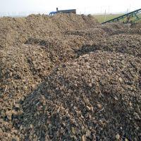 北京有机肥葡萄种植水果专用羊粪哪里有卖 多少钱一吨