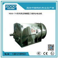 YB2系列高压隔爆型三相异步电动机ZODA中达电机