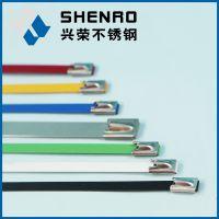 兴荣厂家供应电缆喷塑 涂塑 自锁不锈钢扎带 捆绑带 不锈钢自锁接头