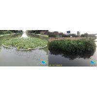 河流生态修复有什么靠谱的技术