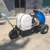 园林杀虫喷雾器 多功能启航牌风送式果树打药机 葡萄果园喷雾机