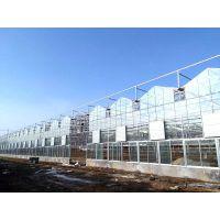 七洲温室工程 玻璃温室造价